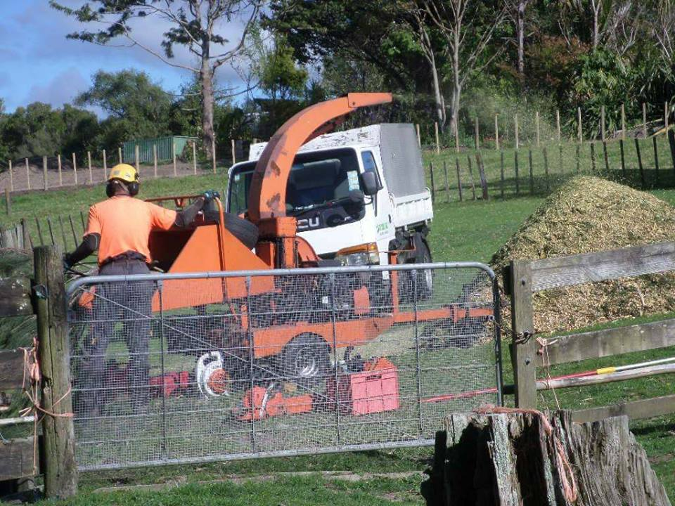 Mulching, tree felling, tree removal Auckland region and Waitakere