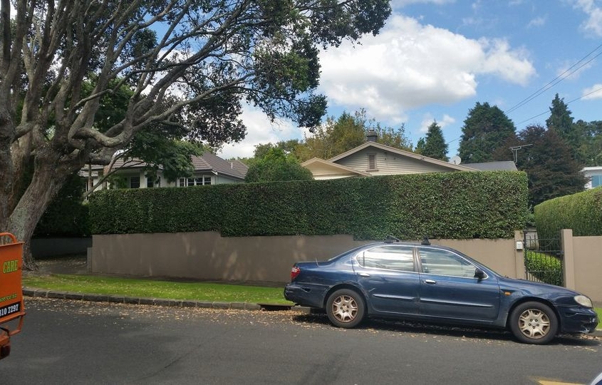 Hedge Work Waitakere and throughout the Auckland region.