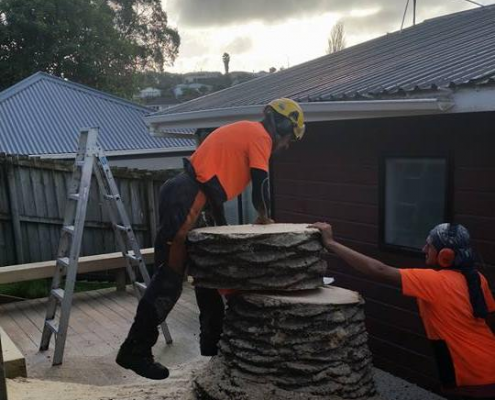 Call Zen Arbor Care Waitakere and Auckland region, for all the tree care you'll ever need. • Stump grinding • Chipping • Mulching.